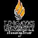 lingayas-university